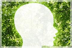脳の反応を利用した最先端の整体のイメージ