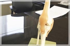 変形性膝間接症って?のイメージ